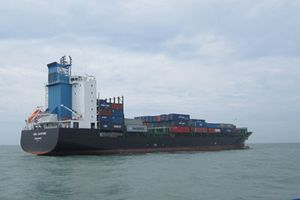 Vụ tàu Sima Sapphire đâm chìm tàu cá: Do thuyền phó tàu hàng chủ quan