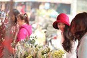 Hương sắc mùa xuân ngập tràn chợ hoa lớn nhất Hà Nội