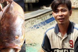 Gặp người bắt được con cá hô khủng nặng gần 130kg