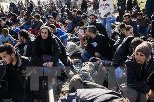 16.000 người tị nạn Syria đang mắc kẹt tại biên giới Jordan