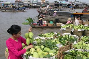 Chợ nổi Cái Răng nhận danh hiệu Di sản văn hóa phi vật thể