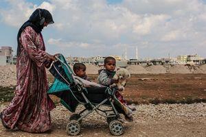 Thường dân Syria: Nạn nhân của chiến dịch đánh chiếm Raqqa