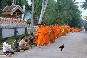 Sống chậm ở miền đất Phật