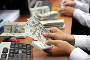 Đồng USD tăng mạnh sau hơn 15 năm rề rà