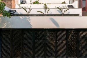 Thêm một nhà Việt 'lợp ruộng bậc thang' lên mái đẹp rụng rời