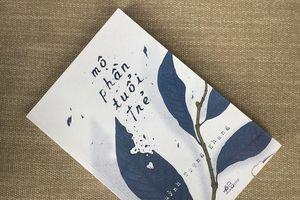 'Mộ phần tuổi trẻ' - một cuốn sách nhiều sai sót
