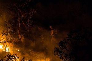 Cháy lớn tại khu bảo tồn thiên nhiên ở miền Trung Brazil