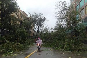 Hướng dẫn người dân xử lý môi trường sau bão lũ
