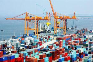 Quan hệ thương mại Việt Nam-Chile tăng mạnh qua các năm