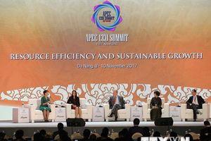 APEC 2017: Xây dựng khu vực hướng tới nhất thể hóa kinh tế khu vực