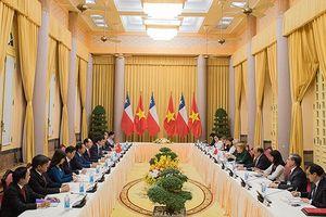 Toàn cảnh chuyến thăm cấp Nhà nước tới Việt Nam của Tổng thống Chile