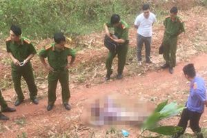 Thiếu nữ tử vong trên đường, thi thể có vết đâm