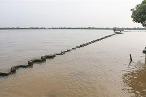 Thủ tướng: Kiểm tra phản ánh dự án lấp sông Tiền