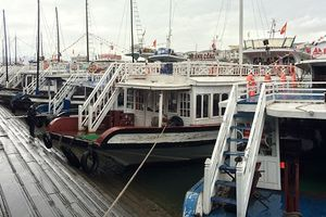 Tàu và thuyền trưởng bị đình chỉ vì cắt bớt hành trình thăm quan vịnh