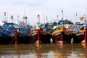 Lo ngại sau bão số 14, Bình Thuận xả tràn 13 hồ chứa nước