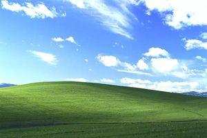 Câu chuyện tình đằng sau tấm hình nền huyền thoại của Window XP