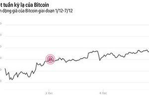 Phát hoảng với 'cơn điên' của Bitcoin