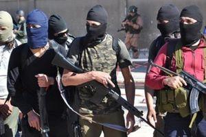 Syria: Phục kích đối thủ ở Aleppo, IS diệt hàng chục tên khủng bố