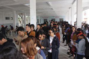 Chủ Nhật Đỏ tại Đà Nẵng thu về 689 đơn vị máu