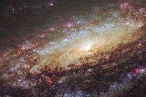 Chiêm ngưỡng vòng xoắn ốc hùng vĩ trong chòm sao Pegasus
