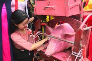 Lễ hội chém lợn Ném Thượng: Quây bạt, 'xử' ông ỉn trong phòng kín