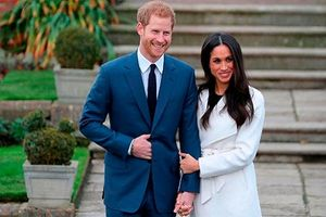 Những con số ấn tượng về đám cưới của Hoàng tử Harry