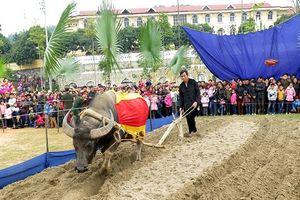 Đặc sắc ngày hội xuống đồng ở Tuyên Quang