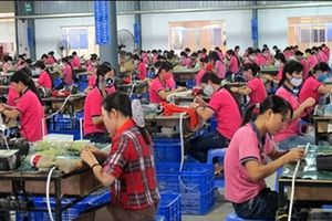 Đồng Nai: 95% công nhân tại các Cty có đông CNLĐ đã trở lại làm việc