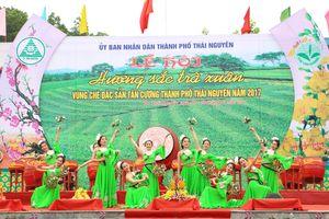 Thái Nguyên: Đầu xuân nhộn nhịp với nhiều lễ hội đặc sắc