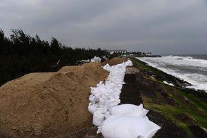 Tìm giải pháp tạm thời chống sạt lở bờ biển Cửa Đại