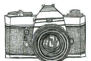 Chụp ảnh đón xuân