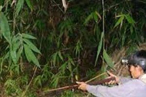 Tạm giữ nam thanh niên nổ súng khiến bạn tử vong trong lúc đi săn