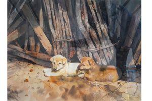 Ngắm chó cưng trong tranh của họa sỹ Việt