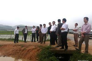 Anh Sơn: Kiểm tra công tác GPMB dự án nhà máy gỗ 1.750 tỷ đồng