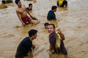 Hàng trăm người xuống ao dầm bùn, chịu rét bắt cá lấy may