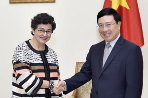 Phó Thủ tướng Phạm Bình Minh tiếp Giám đốc Điều hành ITC