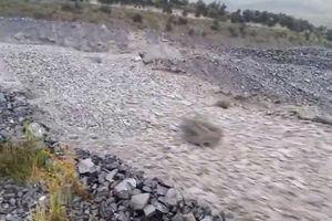 Kỳ lạ dòng sông sỏi cuồn cuộn chảy