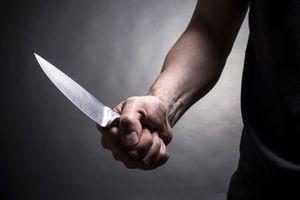 'Phi công trẻ' cắt cổ người tình bằng dao chặt dừa