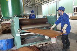 Xuất khẩu gỗ nhắm đích 9 tỉ USD