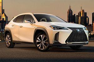 Xe sang Lexus UX 2019 mới bất ngờ lộ diện
