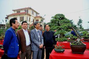 Vĩnh Phúc: Xã Đức Bác điểm sáng Sinh Vật Cảnh trong xây dựng Nông thôn mới