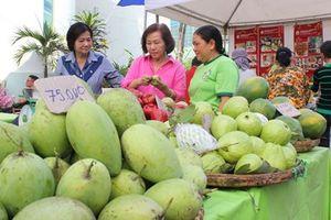 Có nên 'giảm lượng, tăng chất' xuất khẩu nông sản?