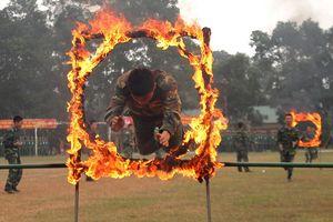 Chiến sĩ Trung đoàn 3 vượt vòng lửa, diễn thể dục có súng