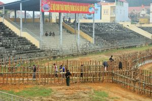 Vĩnh Phúc: Mở cửa tự do xem lễ hội chọi trâu Hải Lựu năm 2018
