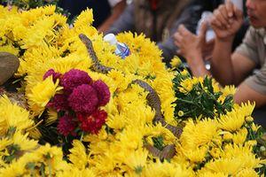 Người dân dựng rạp, kéo điện trên ngôi mộ vô danh xuất hiện 2 con rắn
