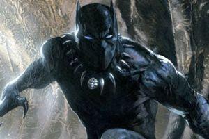 Trình độ võ thuật của Black Panther ở mức độ nào?