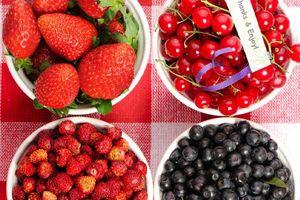 Những thực phẩm đã quá hạn sử dụng nếu tiếc sẽ gây bệnh nguy hiểm cho sức khỏe