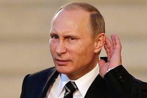 Tổng thống Putin yêu cầu cung cấp bằng chứng can thiệp bầu cử Mỹ