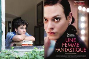 Oscar 2018: Phim đồng tính thất bại, phim chuyển giới lên ngôi