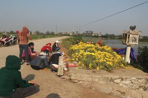 'Rắn thần' ở Quảng Bình được thả về tự nhiên, người dân vẫn kéo đến mộ vô danh thắp hương